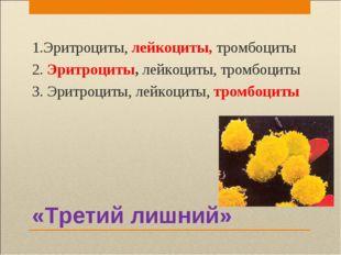 «Третий лишний» 1.Эритроциты, лейкоциты, тромбоциты 2. Эритроциты, лейкоциты,