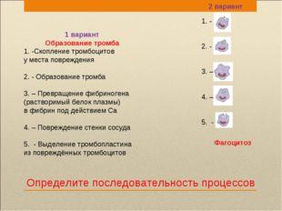 Определите последовательность процессов 1. - 2. - 3. – 4. – 5. - 1 вариант Об
