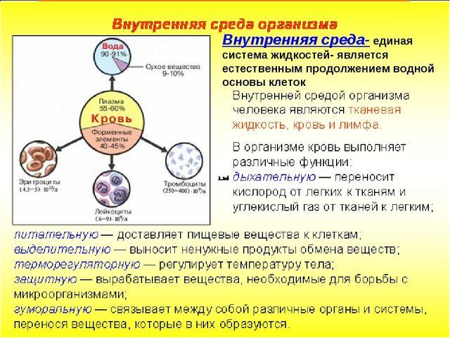 Внутренняя среда- единая система жидкостей- является естественным продолжение...