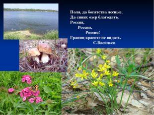Поля, да богатства лесные, Да синих озер благодать. Россия, Россия, Россия