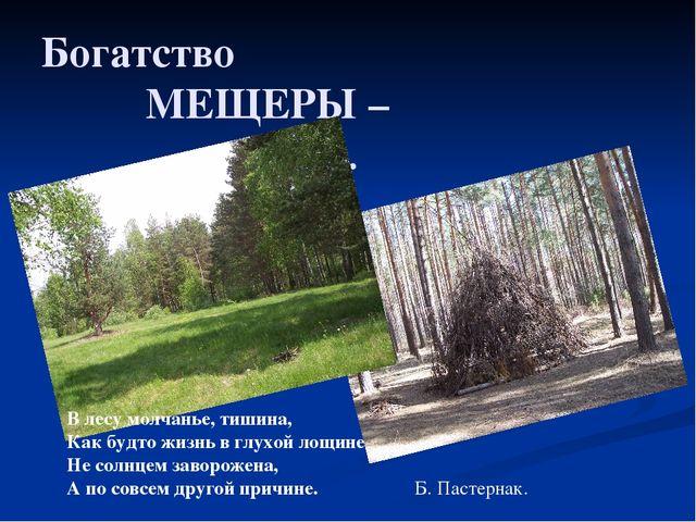 Богатство МЕЩЕРЫ – лес. В лесу молчанье, тишина, Как будто жизнь в...
