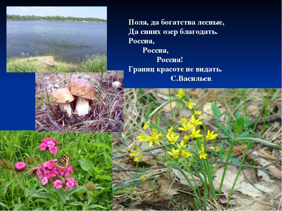 Поля, да богатства лесные, Да синих озер благодать. Россия, Россия, Россия...