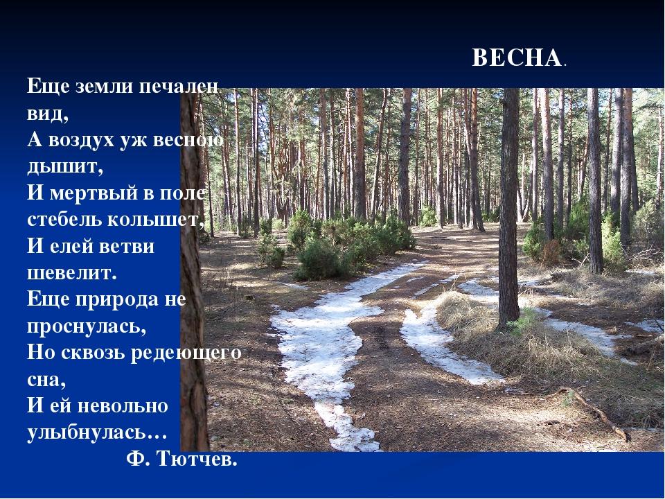 Еще земли печален вид, А воздух уж весною дышит, И мертвый в поле стебель кол...