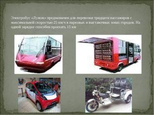 Электробус«Лужок» предназначен для перевозки тридцати пассажиров с максималь