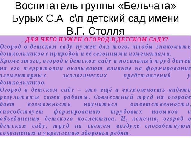Воспитатель группы «Бельчата» Бурых С.А с\п детский сад имени В.Г. Столля