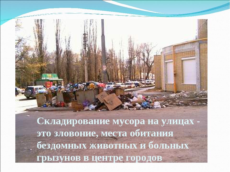 Складирование мусора на улицах - это зловоние, места обитания бездомных живот...