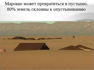 Марокко может превратиться в пустыню. 80% земель склонны к опустыниванию