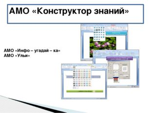 АМО «Конструктор знаний» АМО «Инфо – угадай – ка» АМО «Ульи»