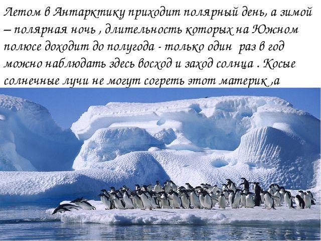Летом в Антарктику приходит полярный день, а зимой – полярная ночь , длительн...