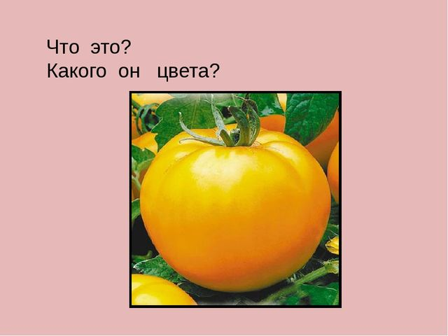 Что это? Какого он цвета?