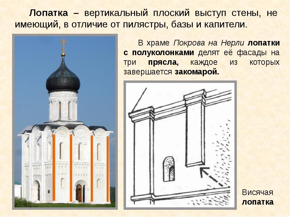 Лопатка – вертикальный плоский выступ стены, не имеющий, в отличие от пилястр...