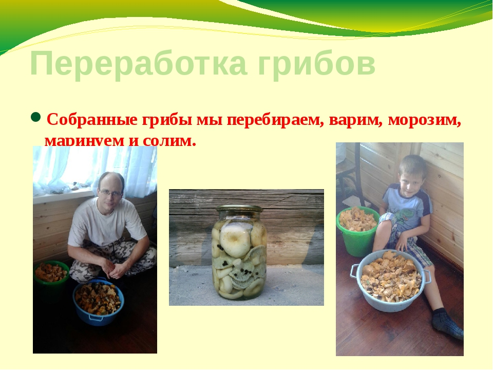 Переработка грибов Собранные грибы мы перебираем, варим, морозим, маринуем и...