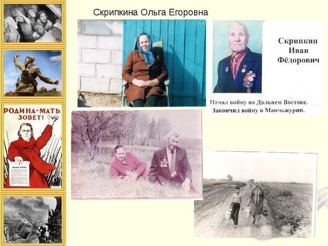 Скрипкина Ольга Егоровна
