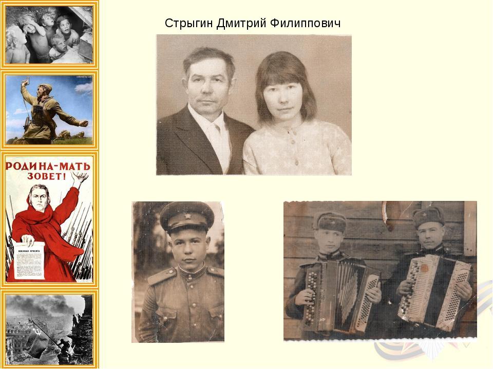 Стрыгин Дмитрий Филиппович