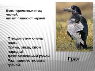 Птицам этим очень рады, Прячь, зима, свои наряды! Даже маленький ручей Рад пр