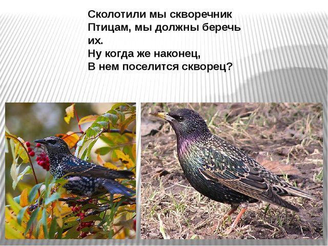 Сколотили мы скворечник Птицам, мы должны беречь их. Ну когда же наконец, В н...