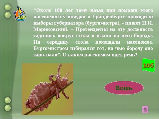 """""""Около 100 лет тому назад при помощи этого насекомого у шведов в Гранденбурге..."""