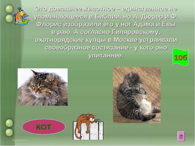 Это домашнее животное – единственное не упоминающееся в Библии, но А. Дюрер и...