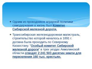 Одним из проводников аграрной политики самодержавия в жизнь был Комитет Сибир