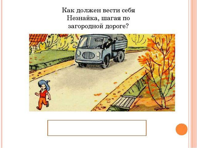 Как должен вести себя Незнайка, шагая по загородной дороге? Идти по обочине д...