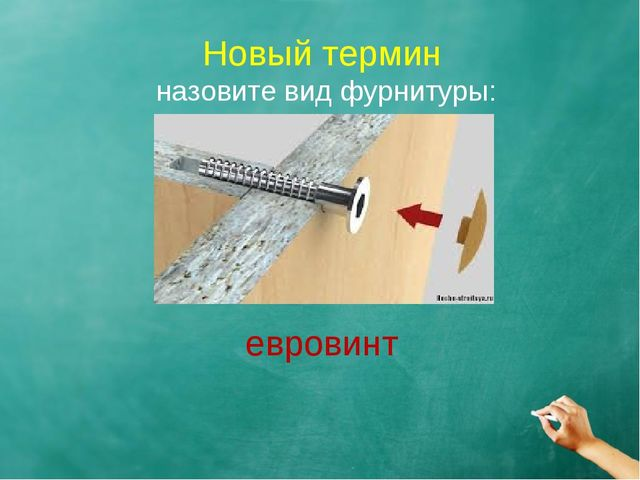 Новый термин назовите вид фурнитуры: евровинт