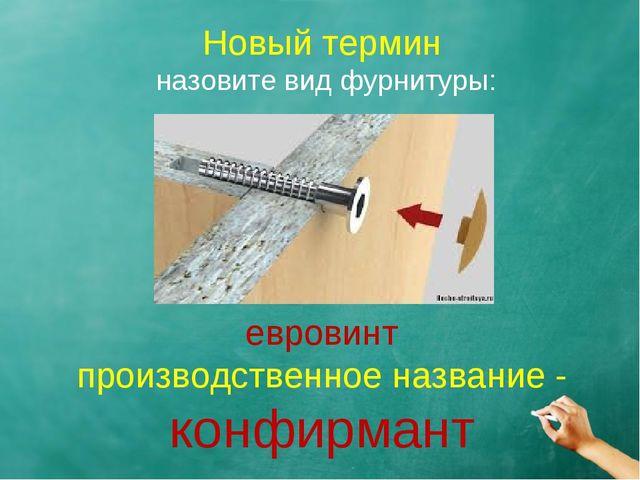 Новый термин назовите вид фурнитуры: евровинт производственное название - кон...