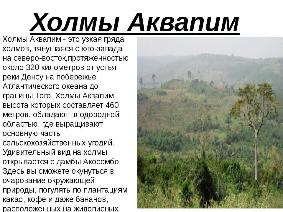 Холмы Аквапим Холмы Аквапим - это узкая гряда холмов, тянущаяся с юго-запада...