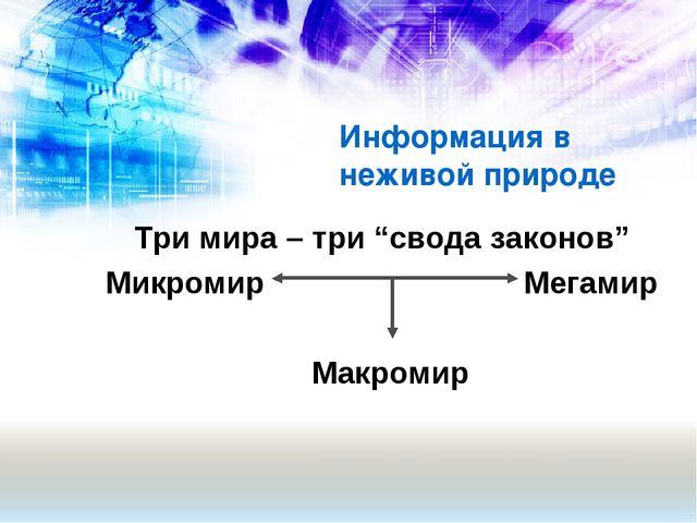 """Три мира – три """"свода законов"""" Микромир Мегамир Макромир Информация в неж..."""