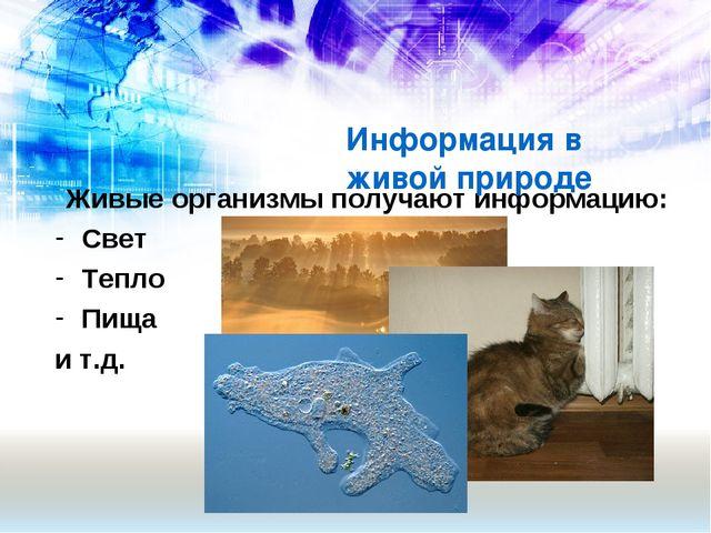 Живые организмы получают информацию: Свет Тепло Пища и т.д. Информация в живо...