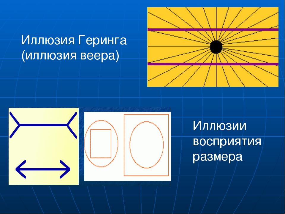 Иллюзия Геринга (иллюзия веера) Иллюзии восприятия размера