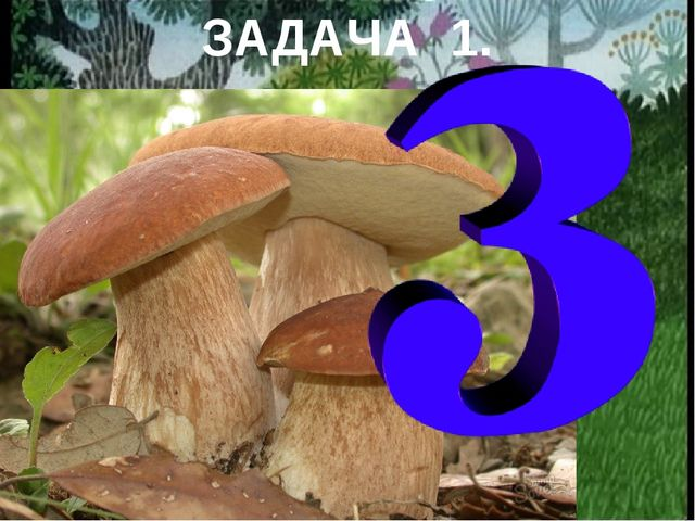 На полянке у дубка Крот увидел два грибка. А подальше у осин Он нашел еще оди...
