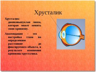 Хрусталик Хрусталик- двояковыпуклая линза, которая может менять свою кривизну