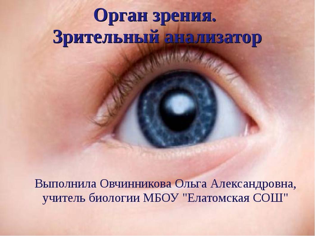 Орган зрения. Зрительный анализатор Выполнила Овчинникова Ольга Александровна...