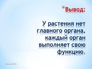 Долгополова Н.М. Долгополова Н.М.