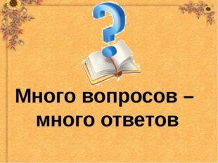 Много вопросов – много ответов