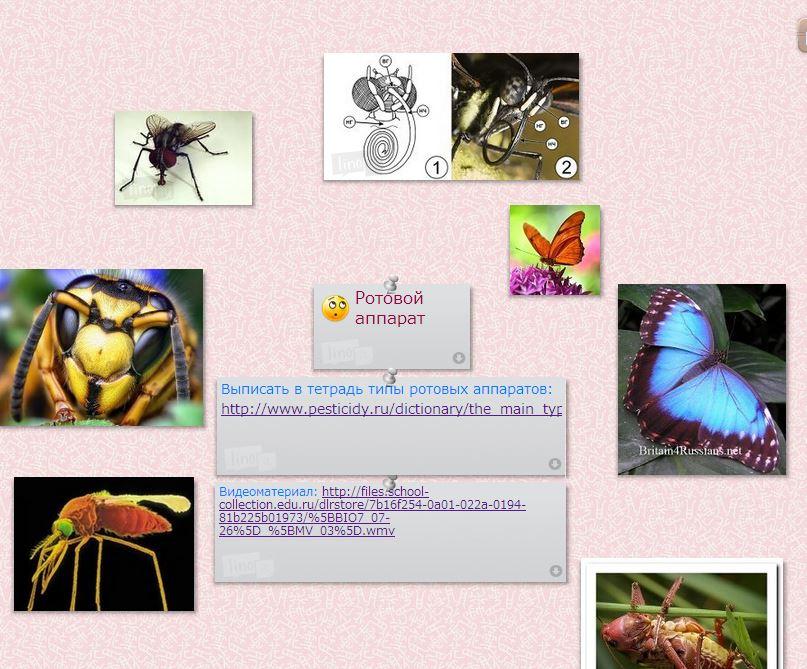 hello_html_17b3385a.jpg
