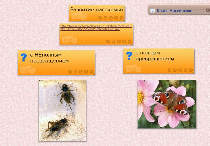 hello_html_4f78b6c6.jpg