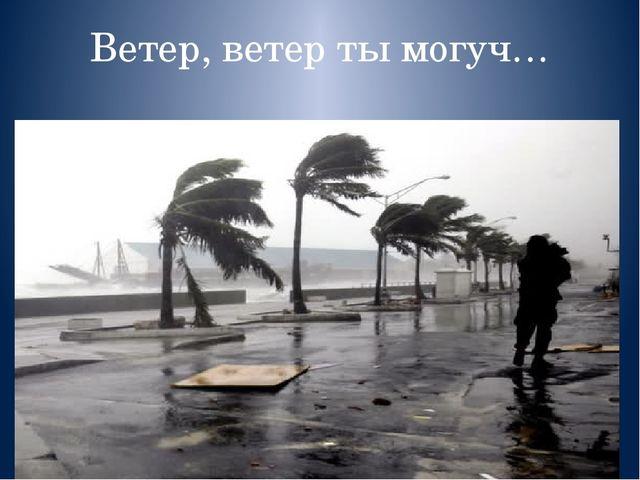 Циклоны, антициклоны, тропические циклоны
