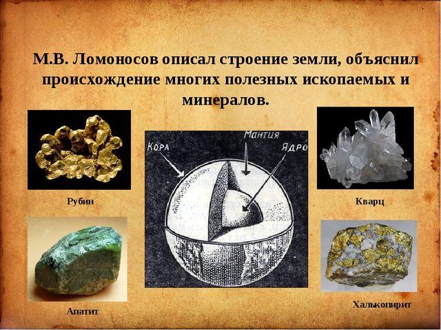 М.В. Ломоносов описал строение земли, объяснил происхождение многих полезных...