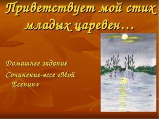 Приветствует мой стих младых царевен… Домашнее задание Сочинение-эссе «Мой Ес
