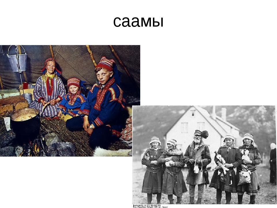 саамы