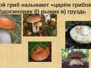 Какой гриб называют «царём грибов»? а) подосиновик б) рыжик в) груздь г)боро