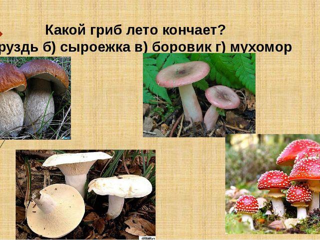 Какой гриб лето кончает? а)груздьб) сыроежка в) боровик г) мухомор
