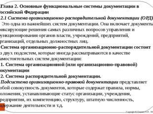 Глава 2.Основные функциональные системы документации в Российской Федерации