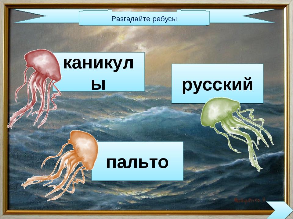 Разгадайте ребусы каникулы русский пальто