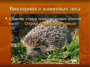 Викторина о животных леса К какому отряду млекопитающих относят ежей? - Отряд