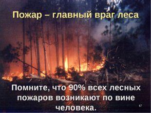 Пожар – главный враг леса Помните, что 90% всех лесных пожаров возникают по в