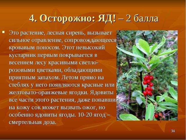 4. Осторожно: ЯД! – 2 балла Это растение, лесная сирень, вызывает сильное отр...