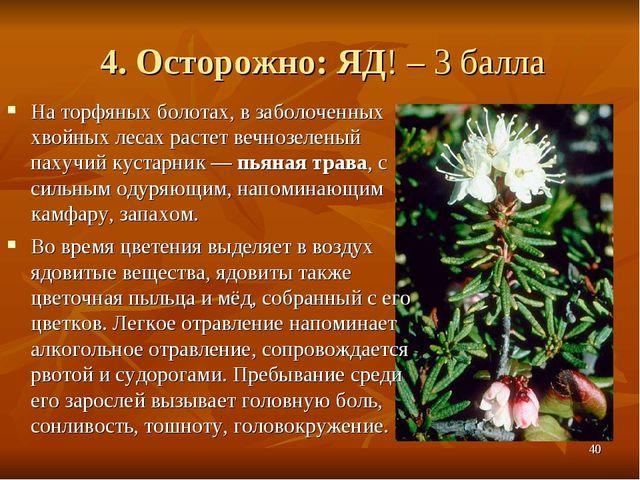 4. Осторожно: ЯД! – 3 балла На торфяных болотах, в заболоченных хвойных лесах...