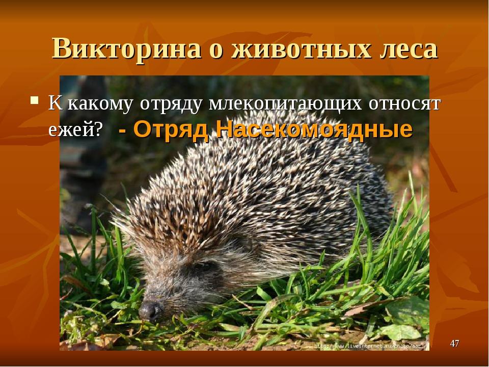 Викторина о животных леса К какому отряду млекопитающих относят ежей? - Отряд...